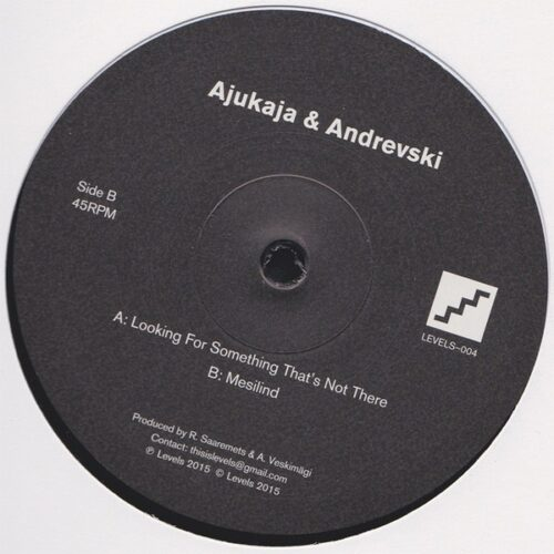 Ajukaja & Andrevski - Looking For Something That's Not There / Mesilind - LEVELS004 - LEVELS