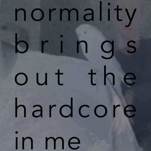 Rin La - Normality Brings Out The Hardcore In Me - RINLA2014 - RIN LA