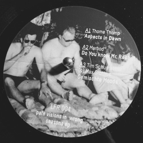 J. Albert|Marbod|Thome|Tim Schumacher - Pale Visions In Wrong Seasons - LFR004 - LOFILE RECORDS