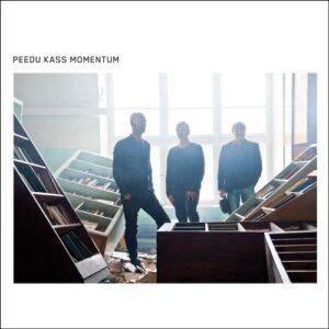 Peedu Kass Momentum - Peedu Kass Momentum - PMM010 - PAW MARKS MUSIC