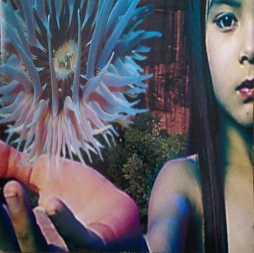 Future Sound Of London - Lifeforms - 0602557787078 - UNIVERSAL MUSIC