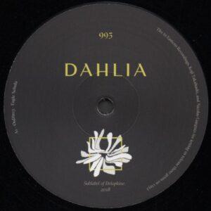 Oud!n / Phil Baker / Palomatic - Dahlia995 - DAHLIA995 - DAHLIA