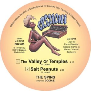 The Spins - The Valley Of Temples - ERZ-003 - EREZIONI