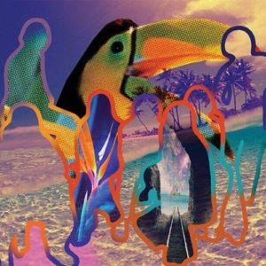 Seahawks - Paradise Freaks - OM12LP - OCEAN MOON