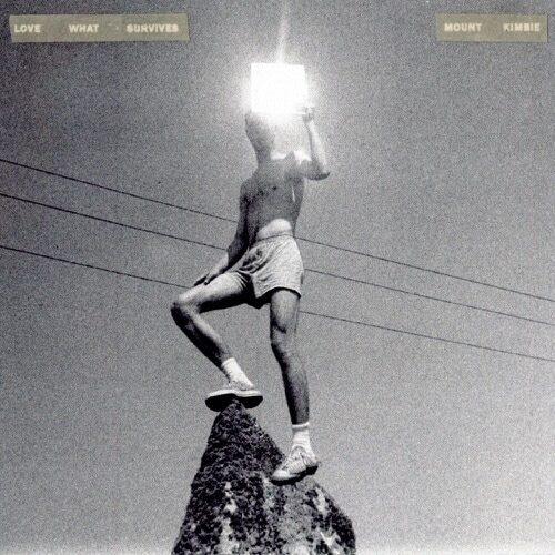 Mount Kimbie - Love What Survives - WARPLP288X - WARP