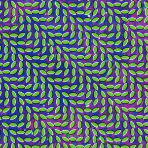 Animal Collective - Merriweather Post Pavillion - WIGLP216 - DOMINO