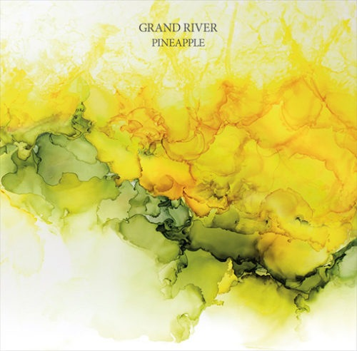 Grand River - Pineapple - Spazio015 - SPAZIO DISPONIBILE