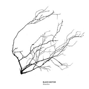 Black Motor - Branches - WJCD05 - WE JAZZ