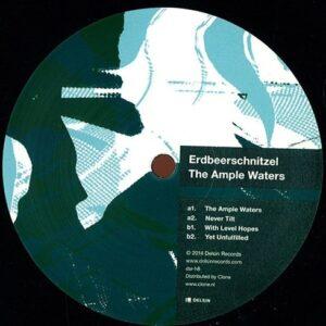 Erdbeerschnitzel - The Ample Waters - dsr-h8 - DELSIN