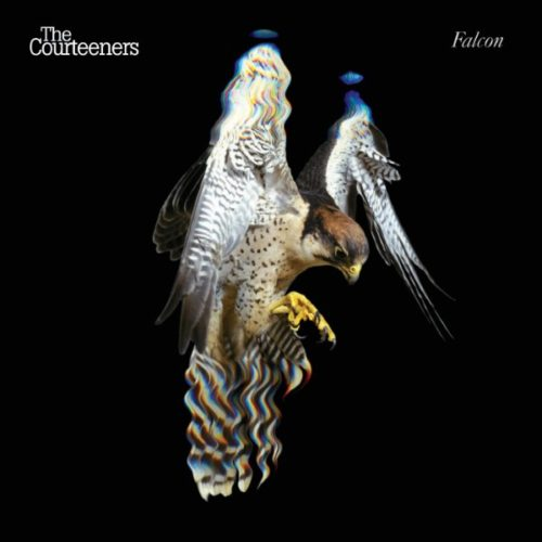 The Courteeners - Falcon - 0602577305740 - UNIVERSAL MUSIC