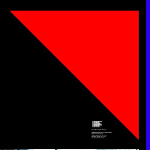Little Dragon/BADBADNOTGOOD - Tried - ZEN7497 - NINJA TUNE