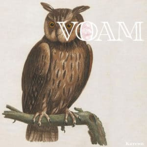 Karenn/Blawan/Pariah - Kind Of Green - VOAM001 - VOAM
