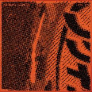 Anthony Naples - Fog FM - ANS3000 - ANS