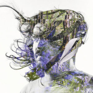 Bibio - Ribbons - WARPLP299X - WARP RECORDS