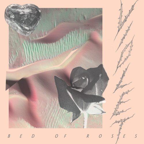 Violet - Bed Of Roses - DE261 - DARK ENTRIES