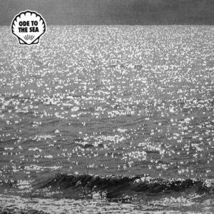 Indirect/Nikolaienko/Indirect Meets Nikolaienko - Ode To The Sea - MUSCUT6 - MUSCUT