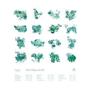 CFCF - The Colors Of Life - BGM002 - BGM SOLUTIONS