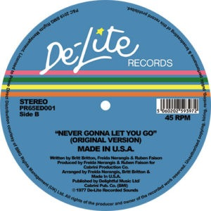 Made In USA - Never Gonna To Let You Go (Theo Parrish) - PR65ED001 - DE-LITE