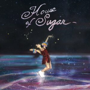 (Sandy) Alex G - House of Sugar - WIGLP451 - DOMINO