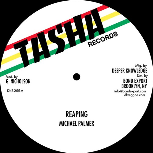Michael Palmer/Frankie Jones - Reaping / Acting So Strange - DKR-255 - TASHA RECORDS