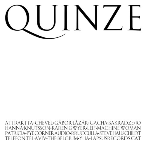 Various - Quince - LPS22 - LAPSUS RECORDS