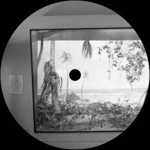 Nikolaienko/Arthur Mine - Nostalgia Por Mesozóica - MUSCUT16 - MUSCUT