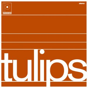 Maston - Tulips - BEWITH087LP - BE WITH RECORDS