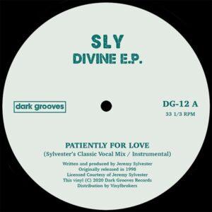 Sly - Divine EP - DG-12 - DARK GROOVES RECORDS