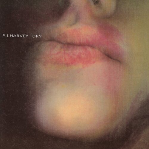 PJ Harvey - Dry (re-issue) - PURE10LP - TOO PURE