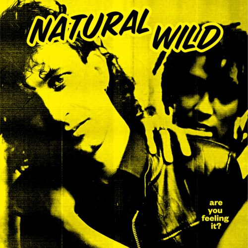 Natural Wild - Hot & Sexable (MorganBuckely remixes) - ACNW12X1 - ALL CITY