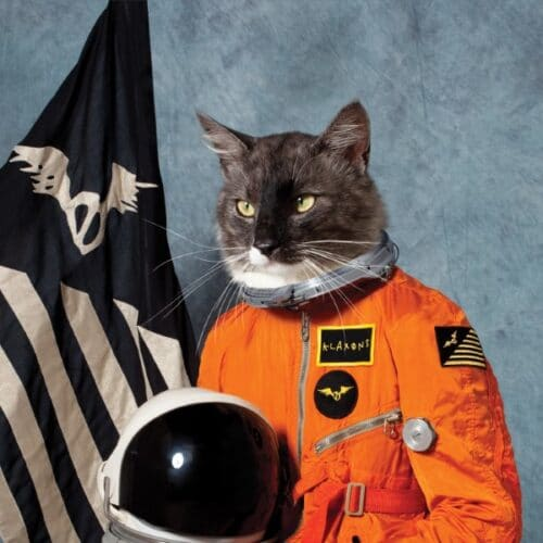 Klaxons - Surfing The Void (Orange Vinyl) - 602508509049 - POLYDOR