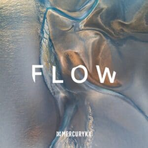 Various Artists - Flow (Vinyl) - 602508532276 - MERCURY KX