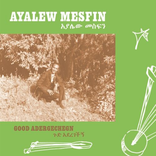 Ayalew Mesfin - Good Aderegechegn (Blindsided By Love) - NA5191LP - NOW AGAIN