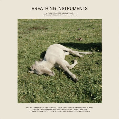 Various - Breathing Instruments - TTP107 - TOUCH THE PLANTS