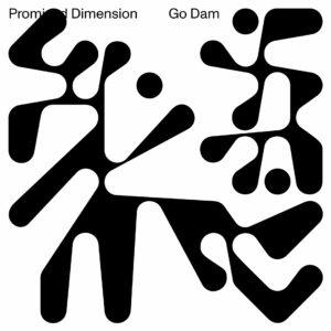 Go Dam - Promised Dimension - BD04 - BRAINDANCE RECORDS