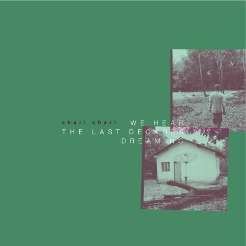 Chari Chari - We Hear The Last Decades Dreaming - GOS004LP - GROOVEMENT ORGANIC SERIES