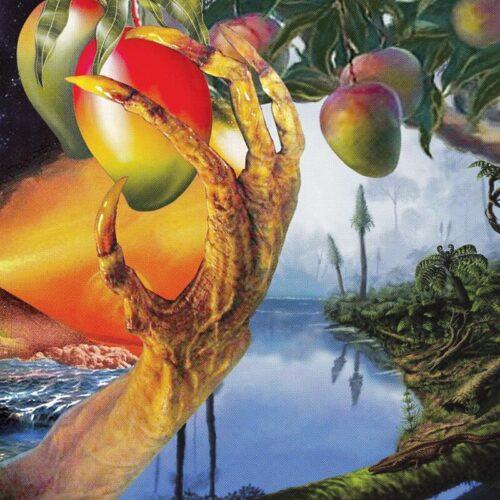 Timelash - A Morphology Of Wonders - ZORN60 - AGUIRRE RECORDS
