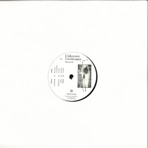 Lewis Fautzi/Eric Fetcher/Reeko/Shifted - Unknown Landscapes - Selected 06 - POLEGROUP055 - POLE GROUP