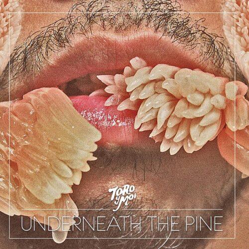Toro Y Moi - Underneath The Pine - CAK059LPX - CARPARK