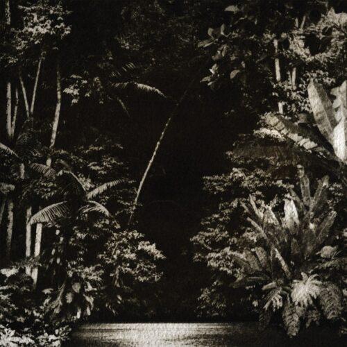 Nicola Cruz - Arpejos Da Floresta - HGHLF026 - HIGHLIFE