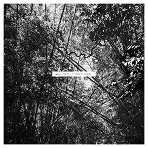 Andrew Pekler - Tristes Tropiques - FAIT-14LP - FAITICHE