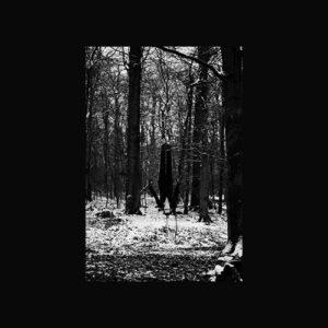 Svreca - Obscur (Regis remix) - SEM18 - SEMANTICA