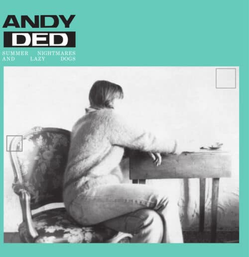 Andy Ded - Summer Nightmares And Lazy Dogs (Tolouse Low Trax Rework) - CAM021 - CAMISOLE