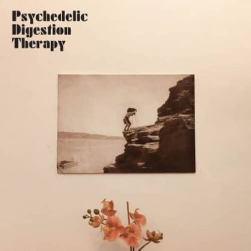 Psychedelic Digestion Therapy - Psychedelic Digestion Therapy - SL109LP - STRANGELOVE