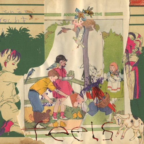 Animal Collective - Feels (Reissue) - AC008LP - DOMINO