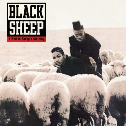 Black Sheep - A Wolf In Sheep's Clothing - GET54066LP - GET ON DOWN