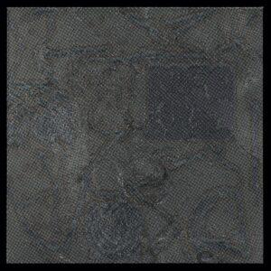 SW - Mydefinition - OYSTER30 - KALAHARI OYSTER CULT