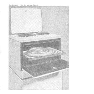 Jan Jelinek - The Raw and the Cooked - FAIT-24LP - FAITICHE