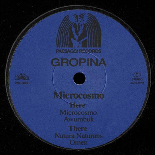 Gropina - Microcosmo - PSGG003 - PAESAGGI RECORDS