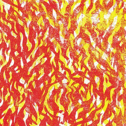 The Bug - Fire (LTD Yellow & Red ) - ZEN275N - NINJA TUNE